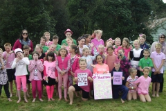 Pink Shirt day - Stop Bullying